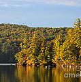 Fall Reflection Print by Michael Mooney