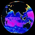 False Colour Image Of The Indian Ocean by Dr Gene Feldman, Nasa Gsfc