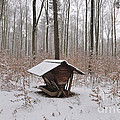 Feed Box In Winterly Forest by Matthias Hauser