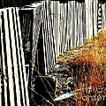 Fence Abstract by Joe Jake Pratt