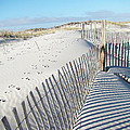 Fences Shadows And Sand Dunes by Mother Nature