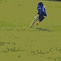 Fielding by Peter  McIntosh