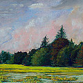 Fields Mid-storm by Bob Northway