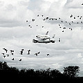 Final Flight Of The Enterprise by Tolga Cetin