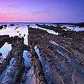 Fingers To The Sea by Matt Hanson