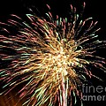 Firework by Meandering Photography
