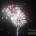 Fireworks by Dyana Rzentkowski