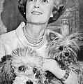 First Lady Patricia Nixon With Pet by Everett