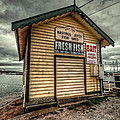 Fish Shed Poster by Wayne Sherriff