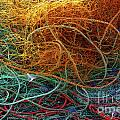 Fishing Nets by Carlos Caetano