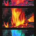 Flames Triptych by Steve Ohlsen