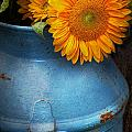 Flower - Sunflower - Little blue sunshine  Print by Mike Savad