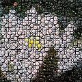 Flower Bottle Cap Mosaic by Paul Van Scott