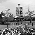 Flowers At Citi Field In Black And White by Rob Hans