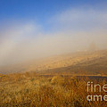 Fog Bow At Lookout Point by Mike  Dawson