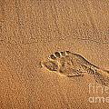 Foot Print by Carlos Caetano