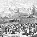 France: Wine Harvest, 1871 by Granger