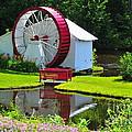 Franconia Notch Waterwheel by Catherine Reusch  Daley