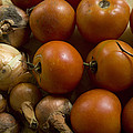 Fresh Tomatos And Onions From A Garden by Joel Sartore