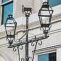 Front Street Lamp by Brenda Bryant