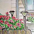Front Yard Lights Sketchbook Project Down My Street by Irina Sztukowski