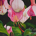 Fuschia Pink Passion by Kimberlee Weisker