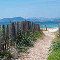Ganivelles (fences) And Pathway To The Beach by Alexandre Fundone