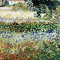 Garden In Bloom by Vincent Van Gogh