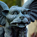 Gargoyle by LeeAnn McLaneGoetz McLaneGoetzStudioLLCcom