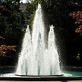 Georgia Herty Field Fountain On Uga North Campus by Replay Photos