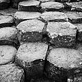 Giants Causeway Stones Northern Ireland by Joe Fox