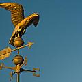 Golden Eagle Weather Vane Print by Douglas Barnett