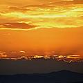 Golden Evening by Kevin Bone