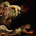Gourds And Leaves Still Life by Tom Mc Nemar