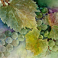 Grapes II by Judy Dodds