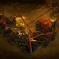 Grapes by Peter Labrosse
