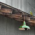 Green Light by Brenda Bryant
