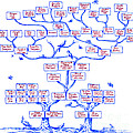 Guggenheim Family Tree by Science Source