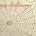 Halloween Spider Web Card