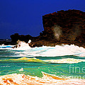 Halona Blowhole by Cheryl Young