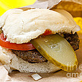 Hamburger With Pickle And Tomato by Elena Elisseeva