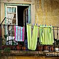 Hanged Clothes by Carlos Caetano