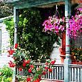 Hanging Baskets And Climbing Roses by Susan Savad