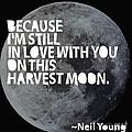 Harvest Moon Print by Cindy Greenbean