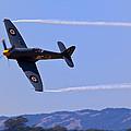 Hawker Sea Fury by Garry Gay