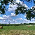 Hay Field in Summertime Print by Douglas Barnett