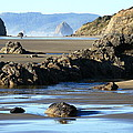 Haystack Rock From Arcadia Beach by Steven A Bash