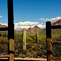 High Chaparral Old Tuscon Arizona  by Susanne Van Hulst