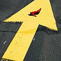 High heel and arrow Print by Garry Gay