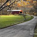 Hoosier Autumn - D007843a by Daniel Dempster